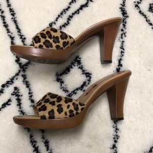 "Bandolino Leopard Print 3.5"" Sandal, Size 7"